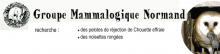 Le Groupe Mammalogique Normand recherche des observateurs.