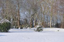 Parc Kleber Lissot en hiver
