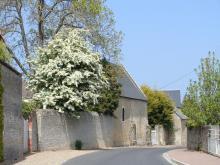 Rue de Magny